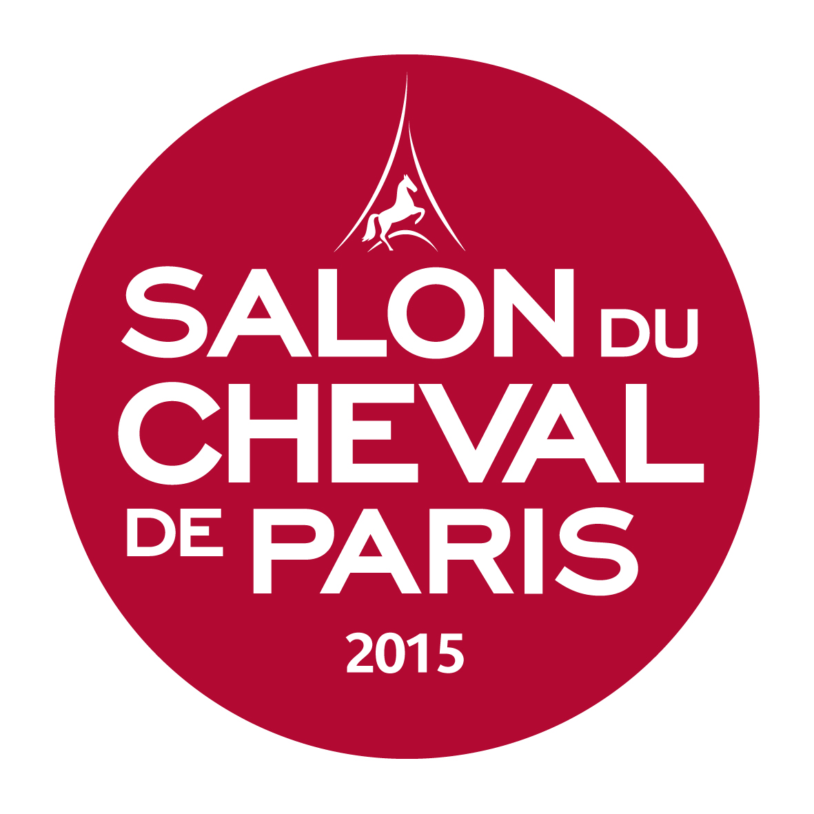 Salon du cheval de paris r servation logement paris nord - Salon de the paris 13 ...